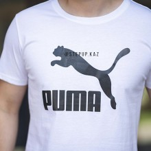 Puma ESSENTIALS+ HEATHER TEE